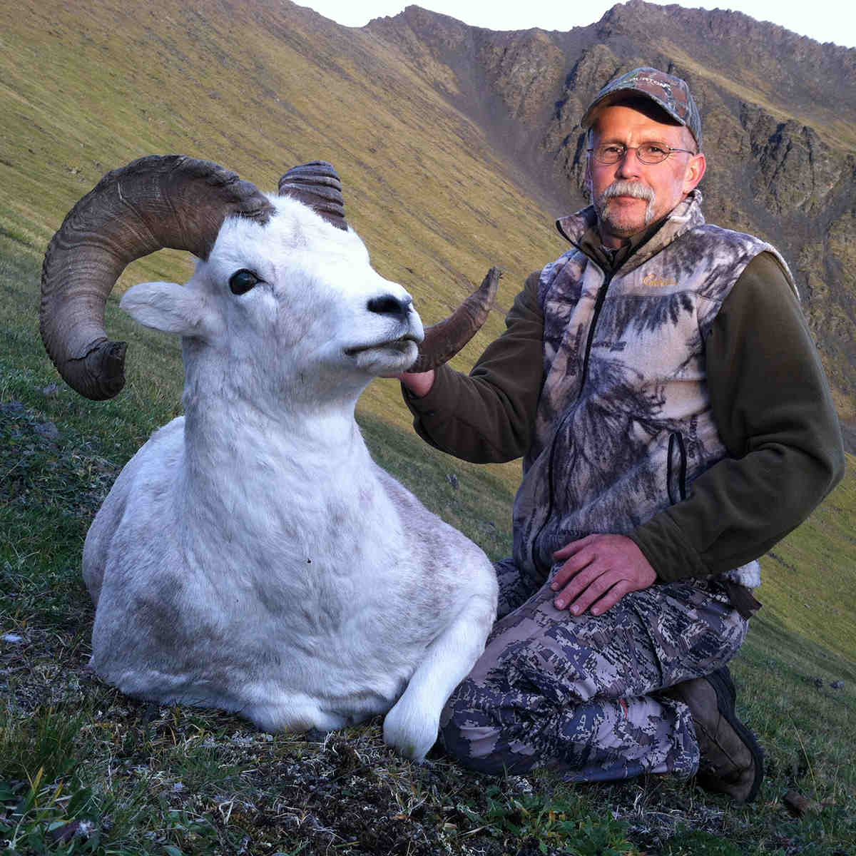 sheep-hunting-yukon-2014